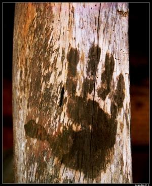 /A Mão do Homem (queima)!!!