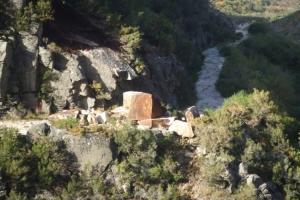 Paisagem Natural/Uma Pedra no Caminho
