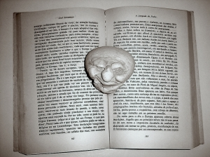 /Jangada De Pedra