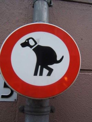 /Será que os cães sabem ler este sinal???