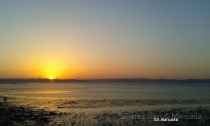 /the end of the day - 2 (Barreiro)