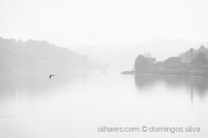 Paisagem Natural/Manhã submersa