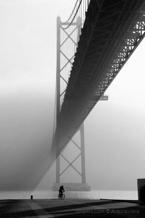 Paisagem Natural/Manhã de nevoeiro no Tejo