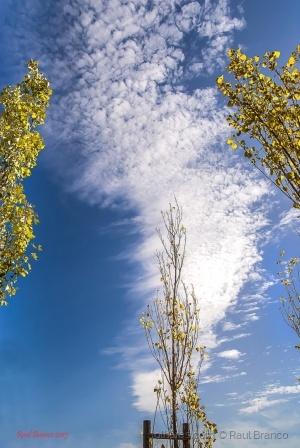 Paisagem Natural/O céu!