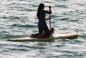 Desporto e Ação/Surf...