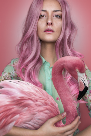 /Flamingo Spirit