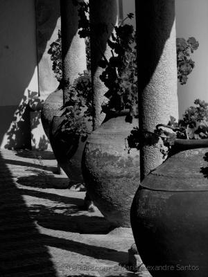Abstrato/Os potes...