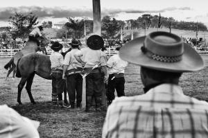 Fotojornalismo/Fiesta de la Patria Gaucha