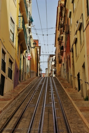 Paisagem Urbana/Linha da Bica