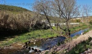 Paisagem Natural/Rio Lizandro
