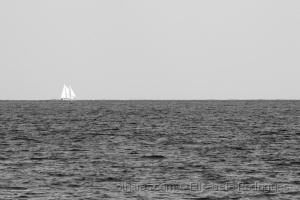 /...solitude...