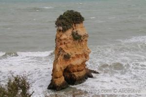 /Praia da Rocha..........