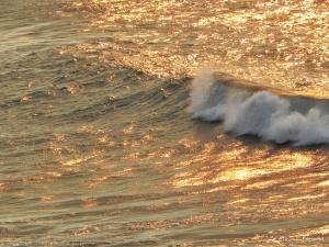 Paisagem Natural/Espuma branca no mar dourado!