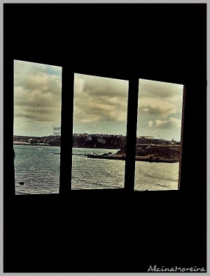 /From that window