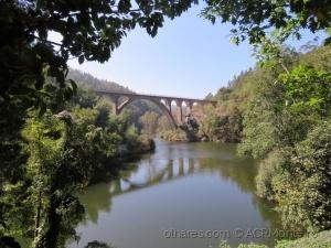 /A Ponte III