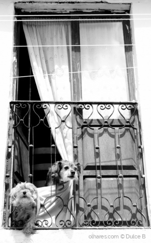 Outros/uma janela aberta