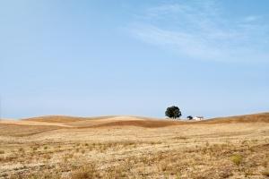 Paisagem Natural/A simplicidade do Alentejo