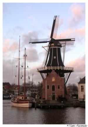 Outros/Haarlem