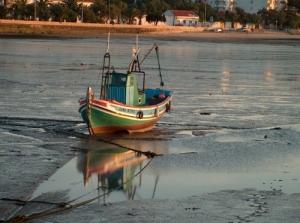 Paisagem Natural/maré baixa