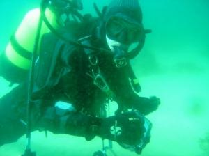 /Um mergulho....