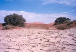 Paisagem Natural/Namibia - Deserto