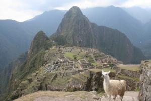 /Machu Pichu e Lama