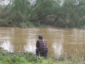 /Pesca à Enguia