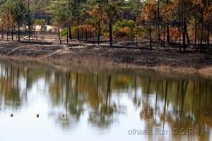 /Lagoa queimada