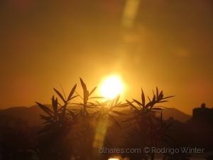 Outros/Sol entre Folhas