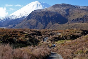 "Paisagem Natural/""Tongariro Alpine Crossing.."""