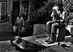 Gentes e Locais/O músico e o seu companheiro de estrada