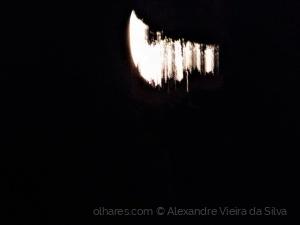 Paisagem Natural/A Lua por entre os arbustos...
