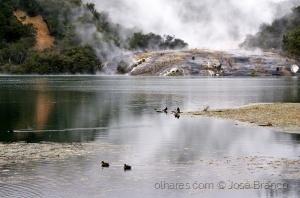 """Paisagem Natural/""""Parque Geotérmico de Orakei Korako..."""""""