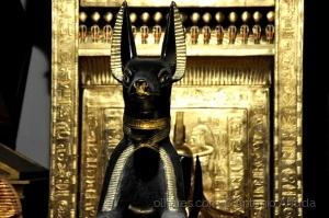 /Expo Tesouros do Egipto X