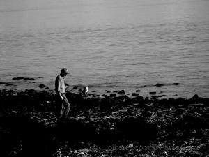 /O homem é a gaivota