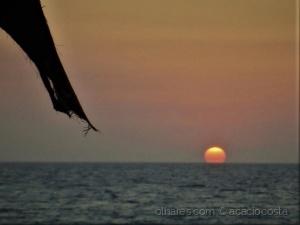 /sunset - a cor do dia (ler)