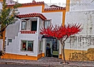 Paisagem Urbana/Tom Avermelhado