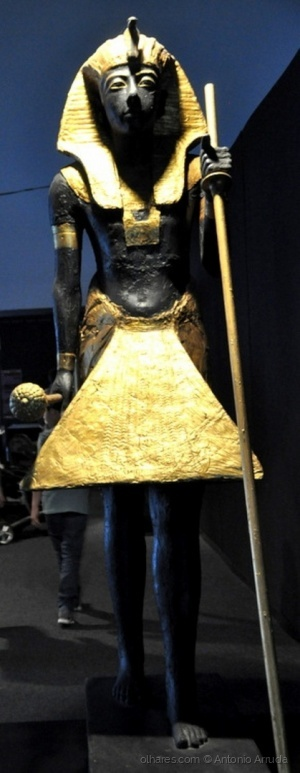 /Expo Tesouros do Egipto XIV