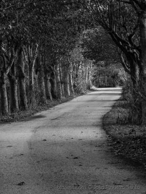Outros/Estrada
