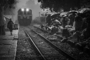 /Des trains pas comme les autres