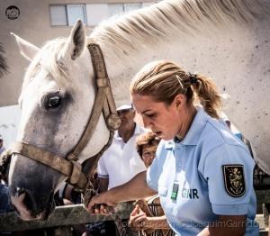 /My beautiful horse