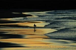 /O último surfista (ler)