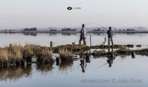 Fotojornalismo/Pesca lúdica