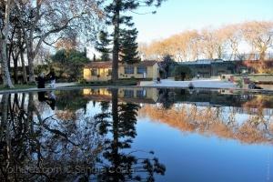 /Jardim do Cerco...Bom dia....
