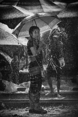 Retratos/Um dia de chuva (...)