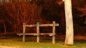 /Paz de Outono