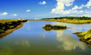/Na Reserva do Estuário do Rio Sado
