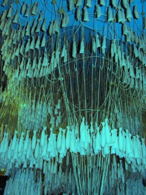 Outros/gaudi´s experience