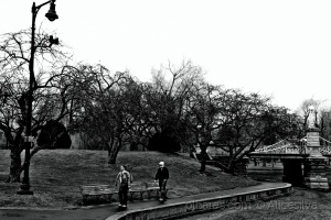 /Passeando no parque.........