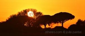 /Pôr do Sol de Hoje